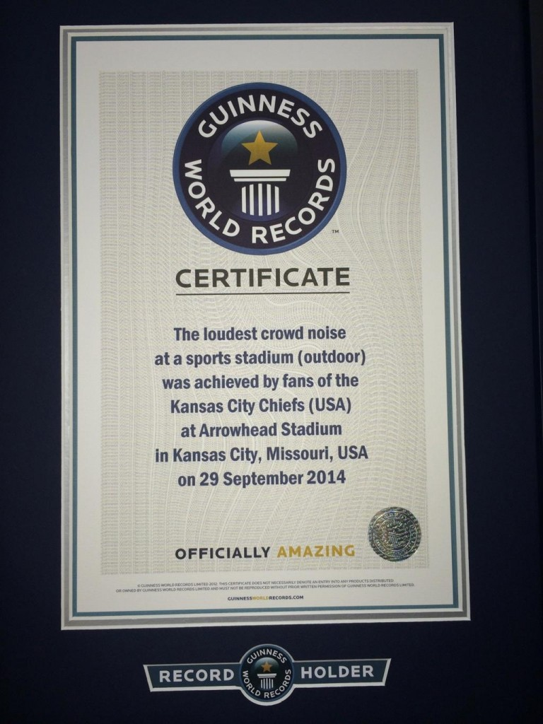 Guinness World Record Certificate -blog